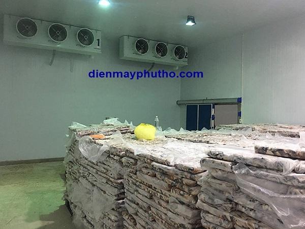 Thiết kế lắp kho lạnh thủy sản uy tín - Điện Máy Phú Thọ