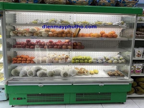 Top 7 mẫu tủ mát trưng bày trái cây giá rẻ, chất lượng